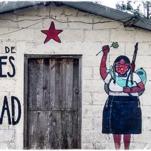 Vorbereitungsseminar: Menschenrechtsbeobachtung in Chiapas/Mexiko (Online)